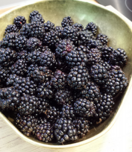 blackberries_bowl